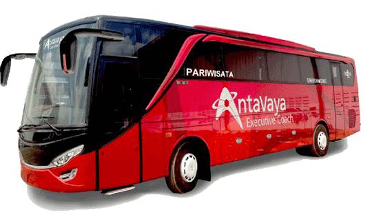 bus-pariwisata-antavaya